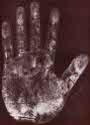 Einstein's left handprint