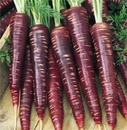 perse carrots