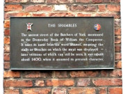 The Shambles
